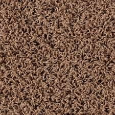 Best Vacuum for Frieze Carpet Prime Reviews
