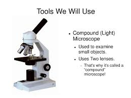 Using A Good Compound Light Microscope Tools We Will Use Compound Light Microscope Ppt Download