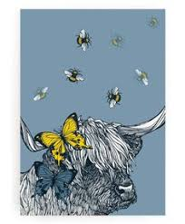 lola highland cow art ideas scottish art print by gillian kyle artwork