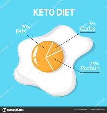 Keto Diet Concept Egg Diagram Showing Percentage Stock