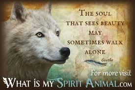 Wolf Quotes Sayings Animal Quotes Sayings