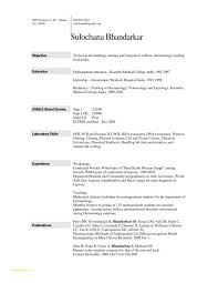 Fill In The Blank Resume Pdf And Resume Template Example Sample