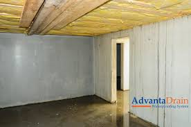 Basement  Simple How To Get Rid Of Basement Mold Room Design Plan Mold In Basement
