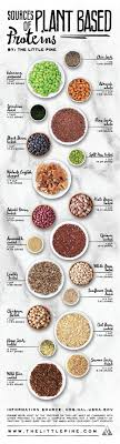 Plant Based Diet Chart Plant Based Protein Sources Whole Food Recipes Healthy