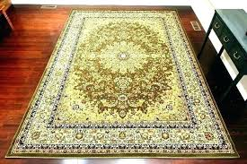 bed bath and beyond carpets carpet cleaner 4 x 6 bathroom rugs pink carpe