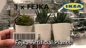 Ikea Fejka Artificial Plants