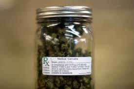 marijuana legalization will florida finally get legal pot