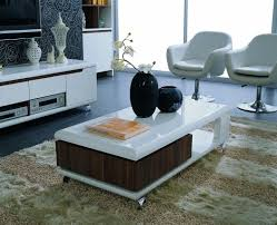 white laminate wooden modern center table designs for living room with wood compartment and black vase with flowers fur rug light and dark brown marble floo