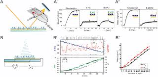 A Spectroscopic Ellipsometry General Principle A 0 And
