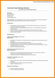 Shining Project Manager Resume Objectives Amazing 5 Objective