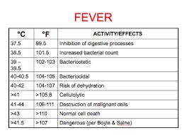 The Fever Trope Fever