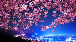 Japan HD Wallpapers