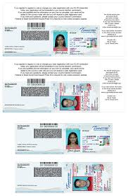 Driver Card License Examples Driver Driver License License Driver Card Examples Card Examples