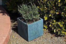picture of diy concrete planter box