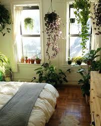 home decor plants living room home decor stores houston thomasnucci