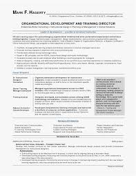 Customer Service Resume Template Free Mesmerizing Customer Service Resume Template Free Simple Resume Examples For Jobs