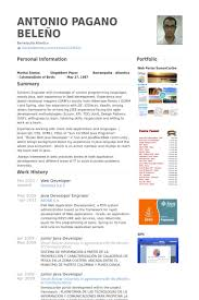 Image result for jr web developer resume