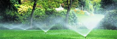 Image result for experience in installing the kind of sprinkler system