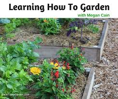 learning how to garden with megan cain