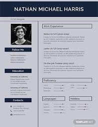 Resume Templates For Publisher 19 Resume Templates In Publisher Examples