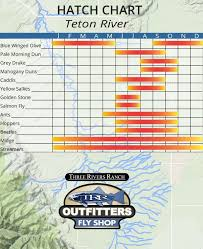 Wyoming Hatch Chart Teton River Hatch Chart Trr Outfitters
