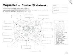 Bacteria Animal And Plant Cell Venn Diagram Plant Diagram Worksheets Odmartlifestyle Com