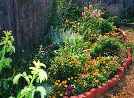 Small Picture 25 best Hummingbird Garden images on Pinterest Hummingbird