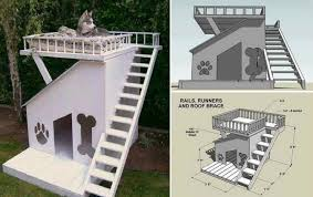 Awesome Dog House DIY Ideas Indoor and Outdoor  PHOTOS Dog House   Roof Top Deck