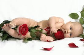 Resultado de imagen para imagenes de rosas