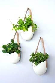 wall mounted planters indoor wall plant