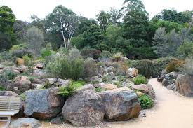 Small Picture Remarkable Australian Native Garden Design Ideas Australian Garden