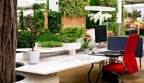 interior landscaping office. Simple Landscaping Interior Landscaping On Landscaping Office