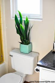 How to Decorate your Home with Indoor Plants Fry Sauce & Grits -  FrySauceandGrits.com