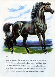 items similar to horse kids picture book version of classic the black stallion by walter farley fun horse lover gift equine shipwreck adventure
