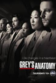 Greys Anatomy 9. Sezon 19. B�l�m �zle