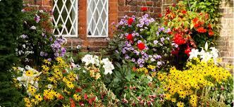 Image result for summer garden