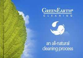 Image result for green earth cleaning logo