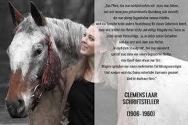 Das Pferd Das Man Wirklich Reiten Will Muss Man Lieben
