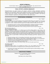 Resume Templates Real Estate Manager Property Examples Download