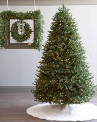 The BH Balsam Fir tree and foliage