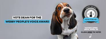 Dean The Basset - VOTE FOR DEAN! you can only vote once... | Facebook