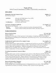 Sample High School Activities Resume Amazing Interests And
