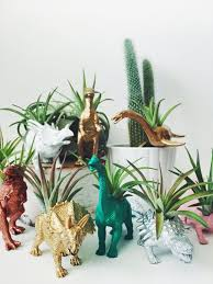 office planter. customize your own small dinosaur planter with air plant home decor desk accessory office unique gift idea d