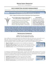 Resume Writing Services Best Resumes Of New York Long Island
