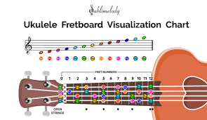 Notes Of Music Staff And Ukulele Fretboard In 2019 Piano