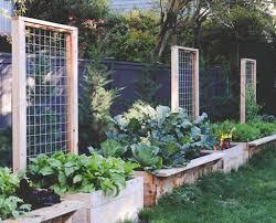 Terrace and Garden: Wodden Crates Garden Trellis - Garden Trellis