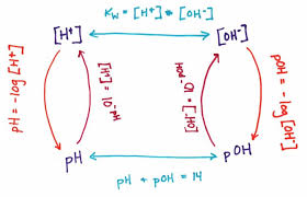 Converting Ph To Hydroxide Ion Concentrations This Is A