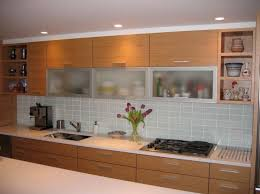 Modern Kitchen With Modern Cabinet Doors Featuring Tempered Glass Materials