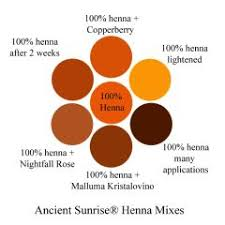 Color Mixing Chart For Hair Henna Mixes Henna Indigo Cassia And Fruit Juices