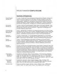 Resume Summary Examples For Entry Level Free Resume Example And